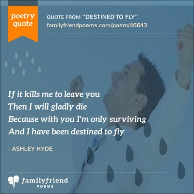 Quote About Needing To Spread Wings And Fly
