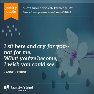 Losing A Friend Quotes Unique Lost Friend Poems  Poems About Losing A Friend
